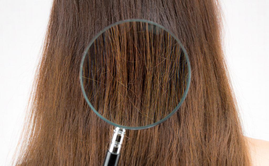 髪がパサついたり広がってしまうのはキューティクルの傷みが原因かも!